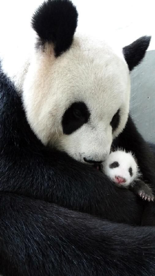 via news.xinhuanet.com