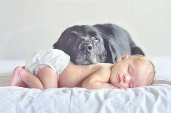 via Lovingmomentsbras.com