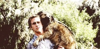 ryan gosling with pet