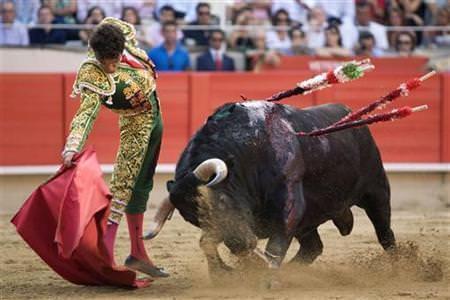 Image courtesy of ibtimes.com