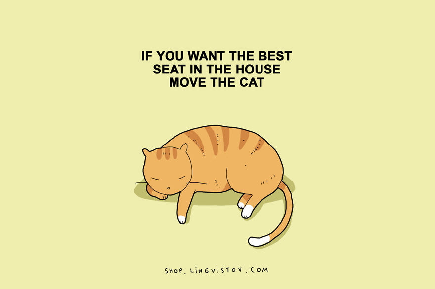 illustrations that sum up owning a cat