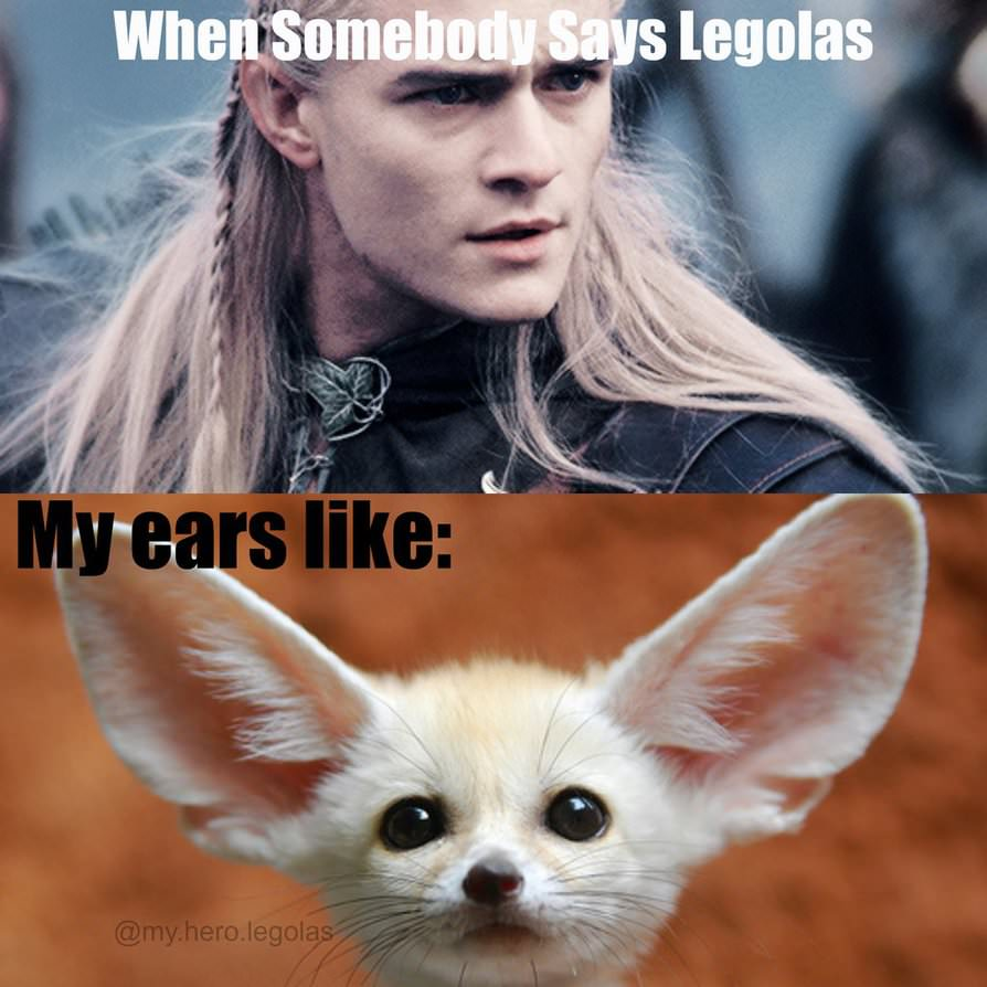 http://pre10.deviantart.net/197a/th/pre/i/2015/091/0/2/legolas_meme_lord_of_the_rings_by_nonamgeladze-d8nyb65.jpg