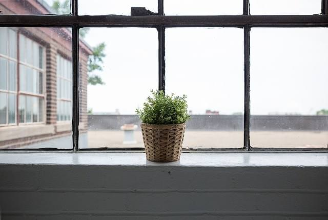 window-839824_640