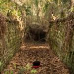 Truly Creepy Photos From An Abandoned Disney World