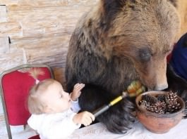 The Craziest Things You Will Probably Only Ever See In Russia
