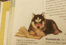 The Most Random And Hilarious Things Found In Textbooks