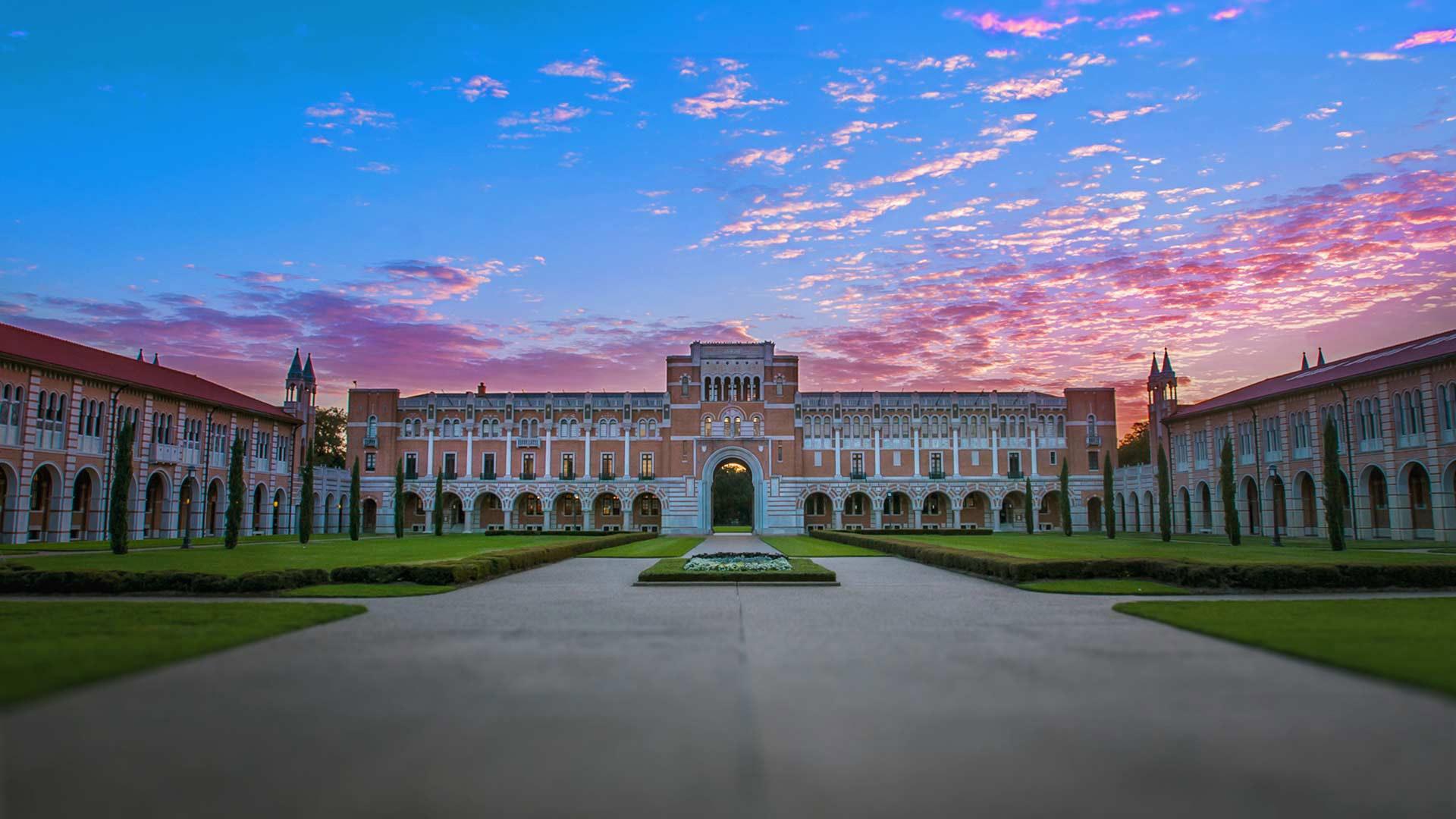 free university education 2020